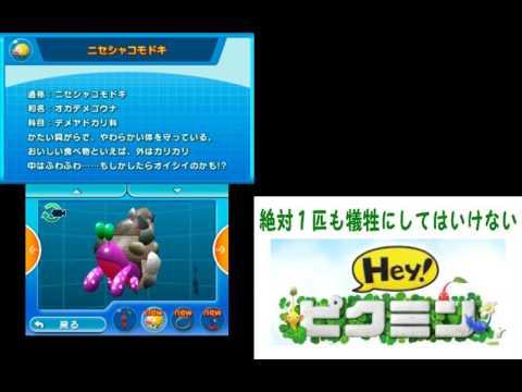 【Hey!ピクミン】図鑑コンプリートと既読の儀