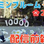 【#ピクミンブルーム】「独自の感想 3個!ピクミン20周年にサプライズ配信配信!」の巻 配信前雑談 2 #PikminBloom
